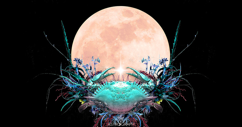 A Full Moon of Heightened Emotion and Earthy Imagination